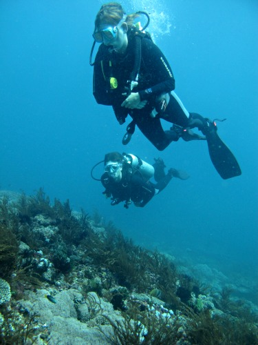 Blue Bubble Diving, Padang Bai
