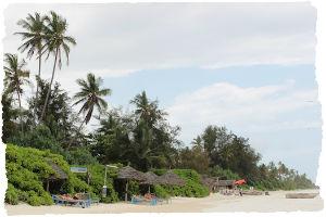 Thumbnail image for Island paradise: Matemwe Beach, Zanzibar