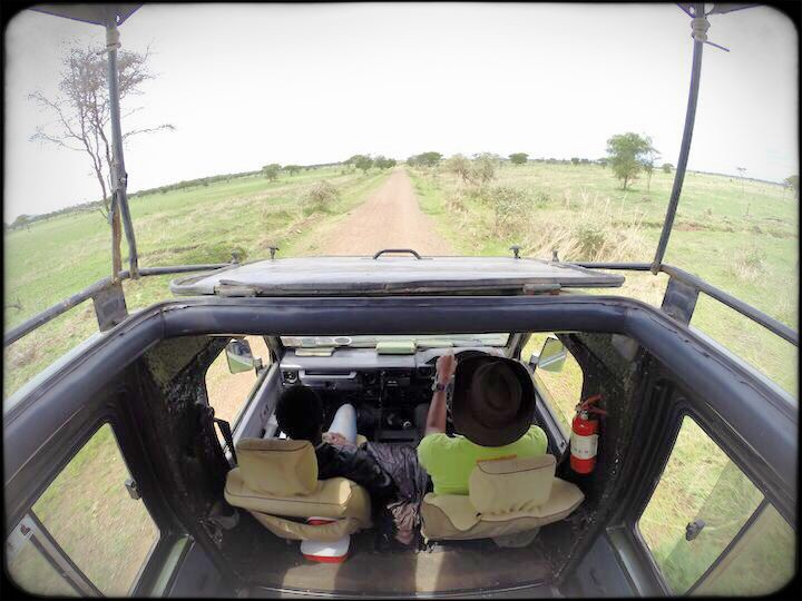 View from our safari truck